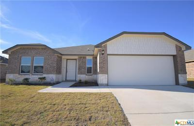 Killeen Single Family Home For Sale: 6605 Catherine Drive