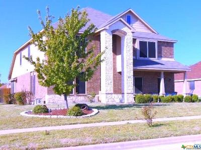 Killeen Single Family Home For Sale: 5905 Graphite Drive
