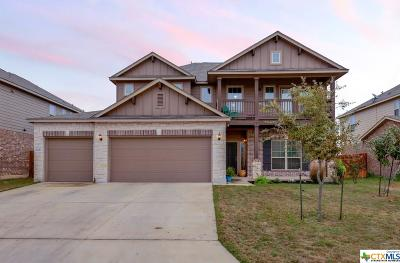Single Family Home For Sale: 1442 Shadow Rock