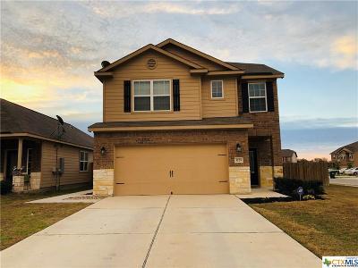 Kyle Single Family Home For Sale: 1725 Breanna Lane