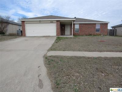 Killeen Single Family Home For Sale: 4205 Stallion Drive