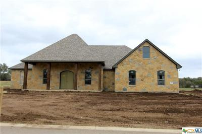 Bell County Single Family Home For Sale: 1031 Ferguson Mill Road