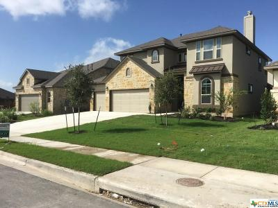 Pflugerville Single Family Home For Sale: 18004 Turning Stream