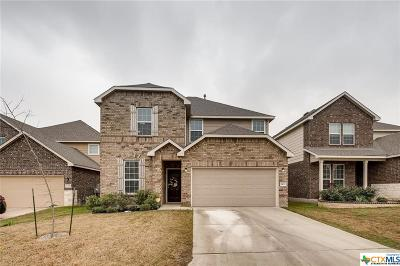 San Antonio Single Family Home For Sale: 1422 Polydora