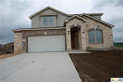New Braunfels Single Family Home For Sale: 3613 Black Cloud Drive