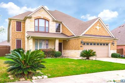 Kyle TX Single Family Home For Sale: $278,000