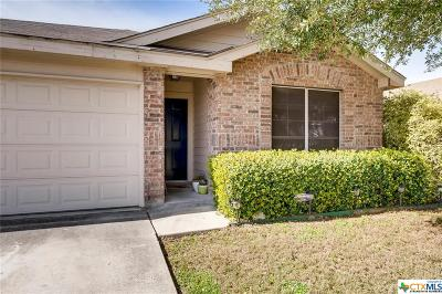 Comal County Single Family Home For Sale: 384 Solitaire