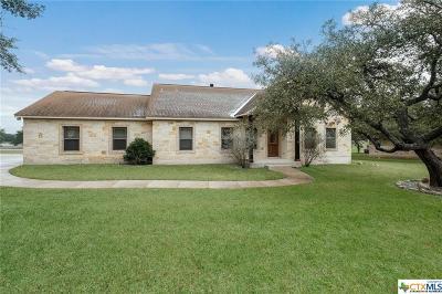 Spring Branch Single Family Home For Sale: 1036 Flightline