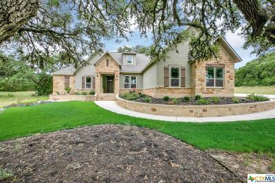 New Braunfels TX Single Family Home For Sale: $580,000
