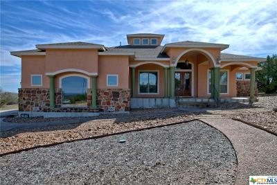 Canyon Lake Single Family Home For Sale: 522 Rebecca Creek
