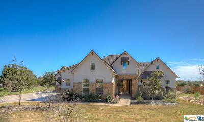 New Braunfels TX Single Family Home For Sale: $600,000