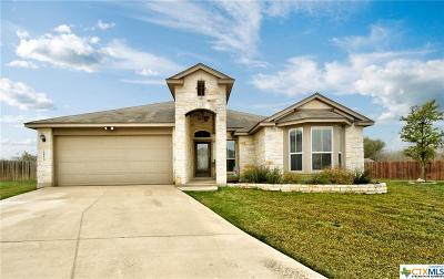 New Braunfels TX Single Family Home For Sale: $259,900