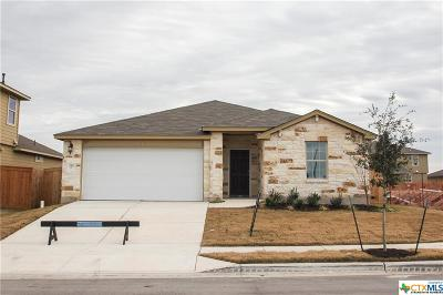 San Marcos Single Family Home For Sale: 224 Horsemint Way