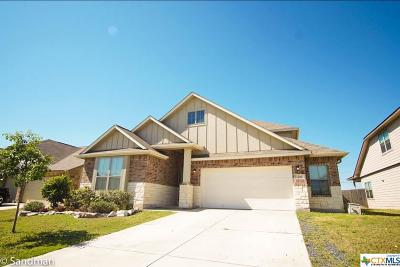 New Braunfels TX Single Family Home For Sale: $289,700