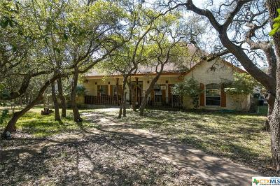 Wimberley Single Family Home For Sale: 1300 River Mountain Drive