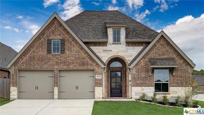 Single Family Home For Sale: 14005 Massima