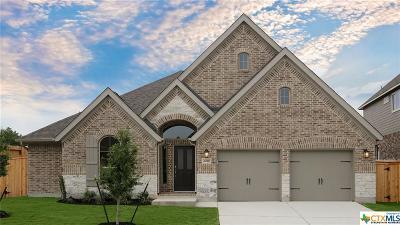San Antonio Single Family Home For Sale: 2026 Wilby Lane