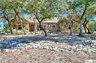 Canyon Lake Single Family Home For Sale: 111 Rodney Lane