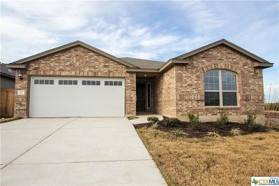 San Marcos Single Family Home For Sale: 112 Sage Meadows