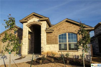 San Marcos Single Family Home For Sale: 3505 Cinkapin Drive