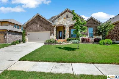 New Braunfels Single Family Home For Sale: 3141 Birch