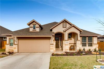 Georgetown TX Single Family Home For Sale: $346,995