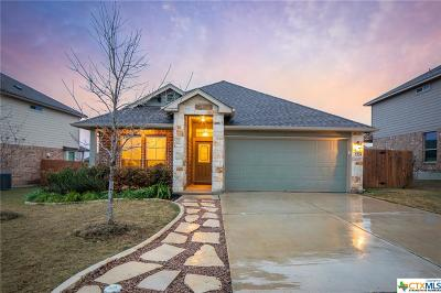 New Braunfels Single Family Home For Sale: 2134 Dove Crossing