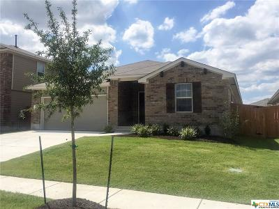 San Marcos Single Family Home For Sale: 132 Sage Meadows Drive