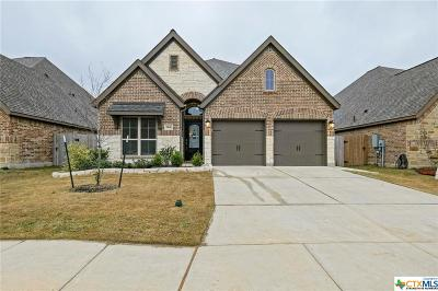 Seguin Single Family Home For Sale: 1941 Field Brook Brook