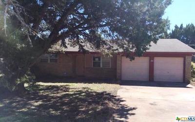 Lampasas County Single Family Home For Sale: 649 County Road 4876