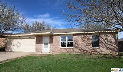 Killeen Single Family Home For Sale: 4107 Beach Ball Drive