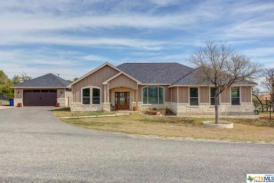 Fischer TX Single Family Home For Sale: $425,000