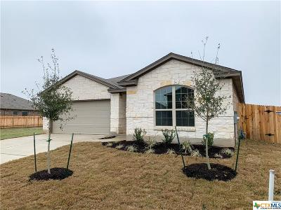 San Marcos Single Family Home For Sale: 3217 Jacob Lane