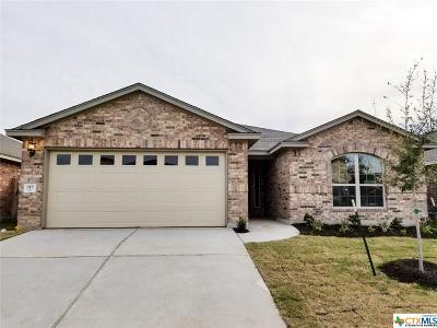 San Marcos Single Family Home For Sale: 113 Sawtooth Drive