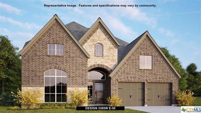 San Antonio Single Family Home For Sale: 14039 Gemma