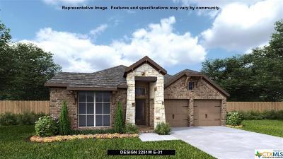 San Antonio Single Family Home For Sale: 2170 Elysian Trail