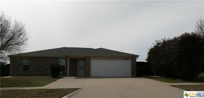 Killeen Single Family Home For Sale: 4102 Beach Ball Drive
