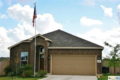New Braunfels Rental For Rent: 841 Water