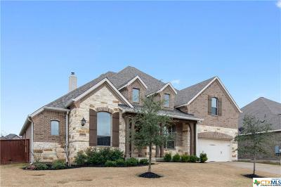 Williamson County Single Family Home For Sale: 408 El Ranchero