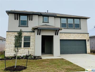 New Braunfels Single Family Home For Sale: 3960 Legend Rock Lane