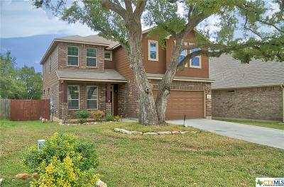 San Antonio Single Family Home For Sale: 22706 Allegro