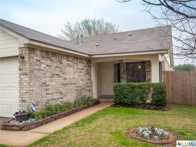 Pflugerville Single Family Home For Sale: 21101 Byerly Turk Drive