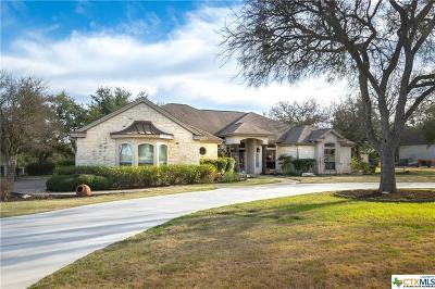 Georgetown Single Family Home For Sale: 120 Walnut Tree Loop
