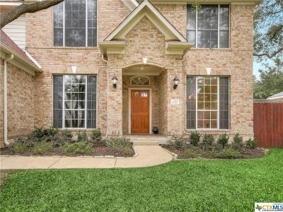 Round Rock Single Family Home For Sale: 1117 Dalea Bluff
