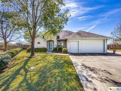 Seguin Single Family Home For Sale: 706 River Oak Drive