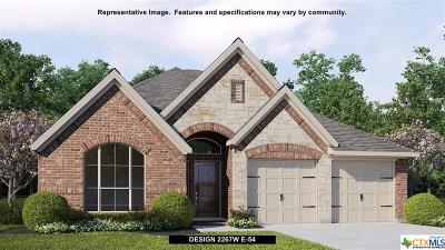 New Braunfels TX Single Family Home For Sale: $319,900