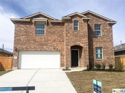 San Marcos TX Single Family Home For Sale: $249,990