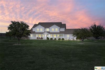 Bell County Single Family Home For Sale: 1651 Rogers Cemetery Road
