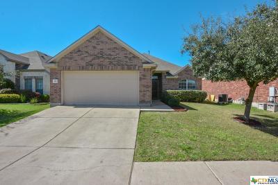 Buda TX Single Family Home For Sale: $235,000