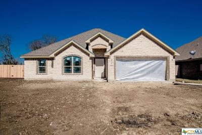 Bell County Single Family Home For Sale: 2503 Paisley Drive